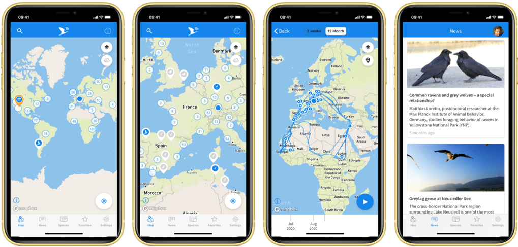 Animal Tracker is a free app that can be installed on smartphones. It enables anyone to document their own animal observations and make them accessible to the scientific community.